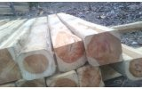 Wood Timber Export