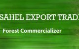 Sahel Export Trade Ltd