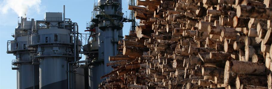 Metsä Group to expand mechanical wood products output at Äänekoski mill in Finland