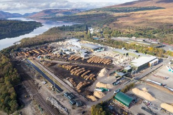 Binderholz to take over BSW Timber