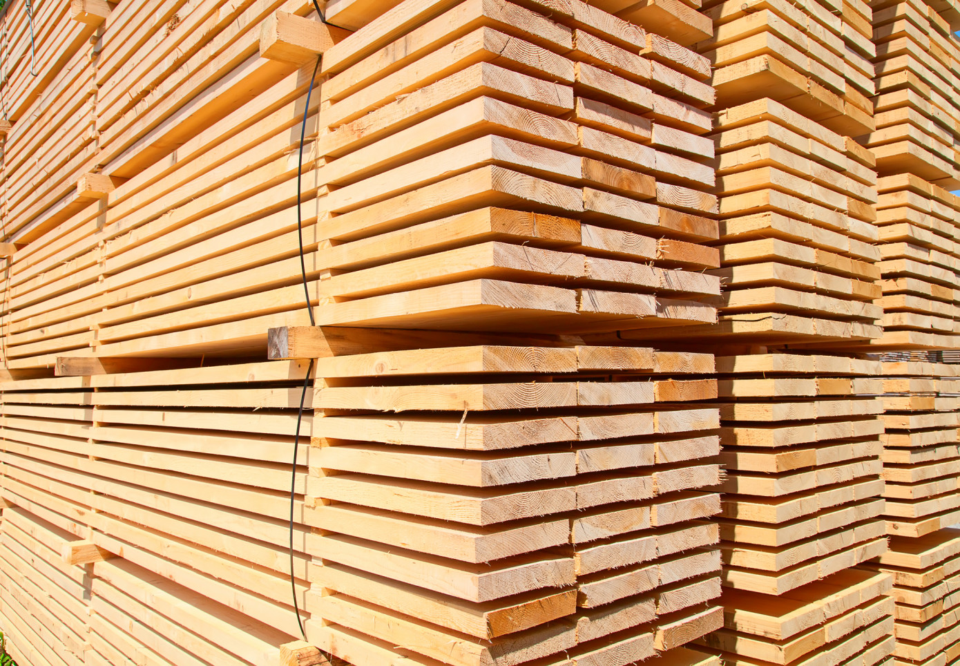 Canfor to invest $160 million in new sawmill in Louisiana and stop greenfield project in Georgia