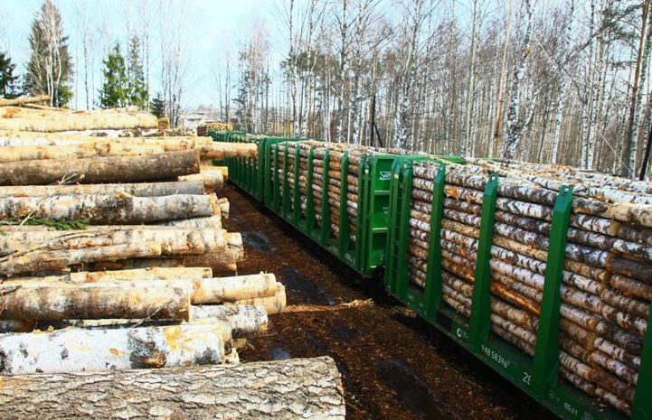 В марте 2021 г. компания «ЛесТрейд-Экспорт» отгрузила 765 вагонов круглого леса