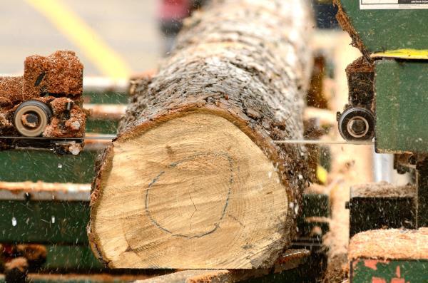 В июле 2021 г. коэффициент загрузки производственных мощностей в деревообработке Канады составил 78,1%