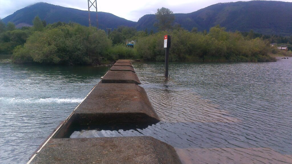 Catalyst Crofton to resume regular seasonal operation of Cowichan Lake weir in early April