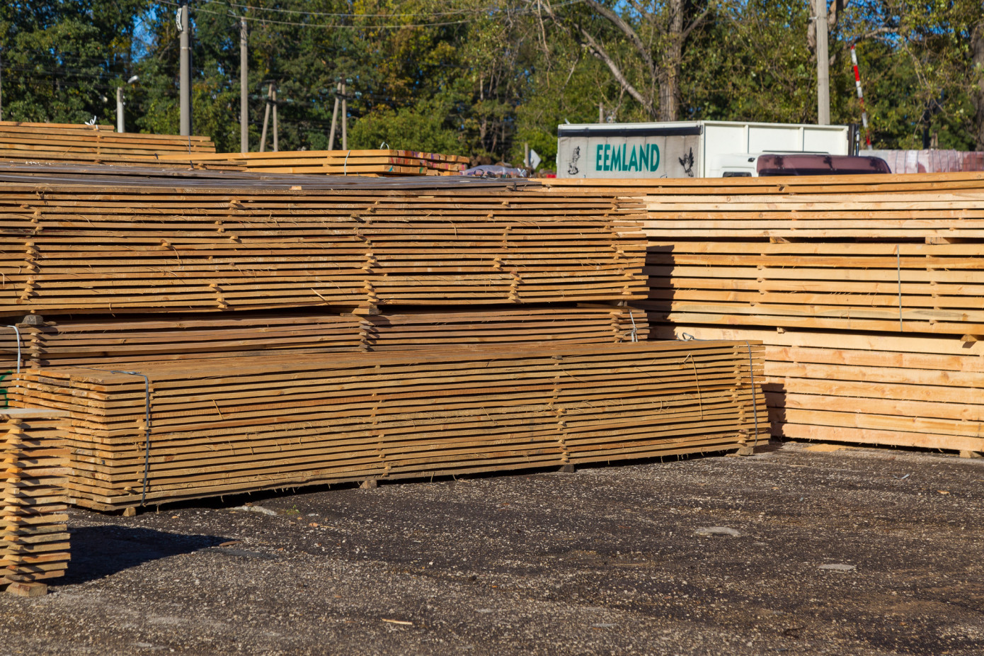 Russian lumber export price jump 78.6% in August 2021