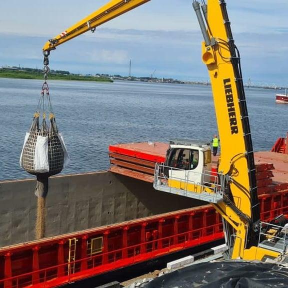Компания «Регион-лес» начала поставки топливных пеллет в Европу