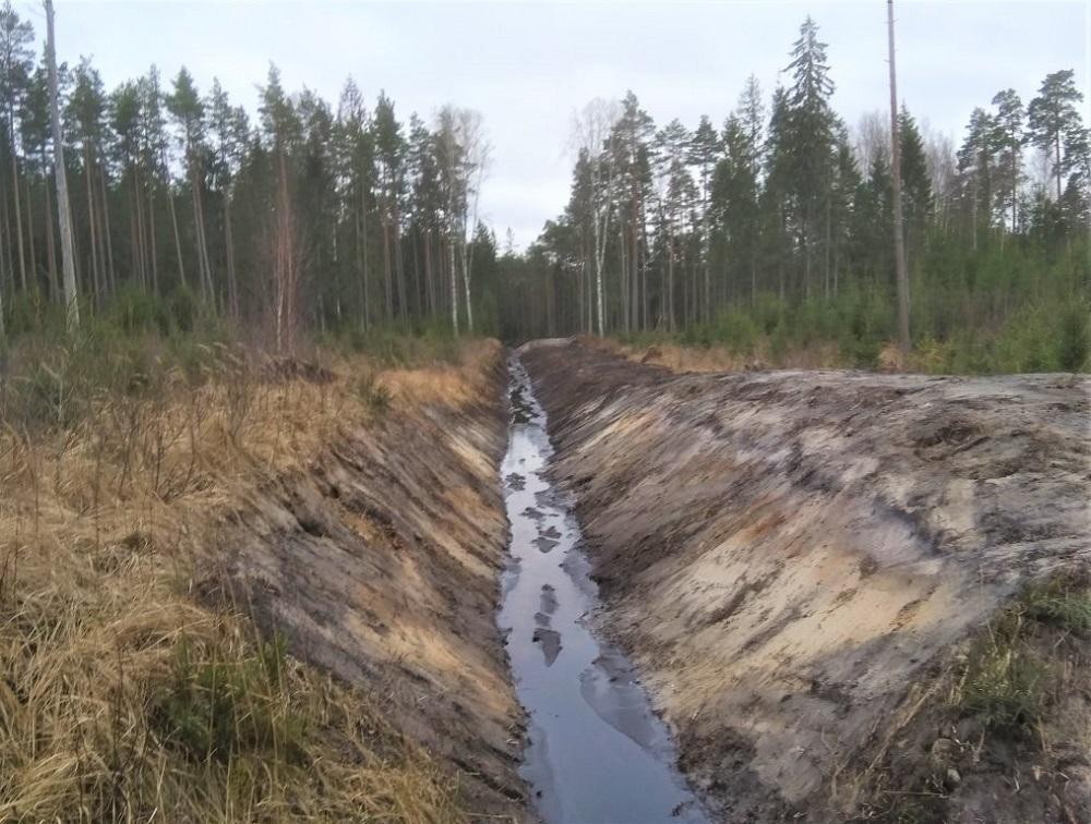 LVM renewing forest drainage system in North Kurzeme region, Latvia