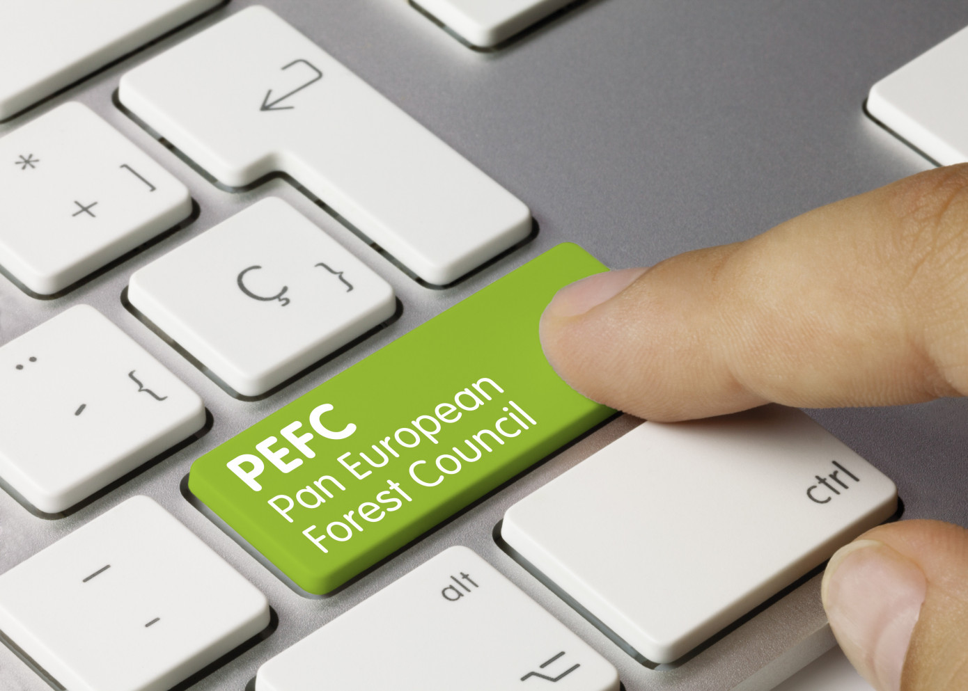 PEFC extends transition period for 2020 standards