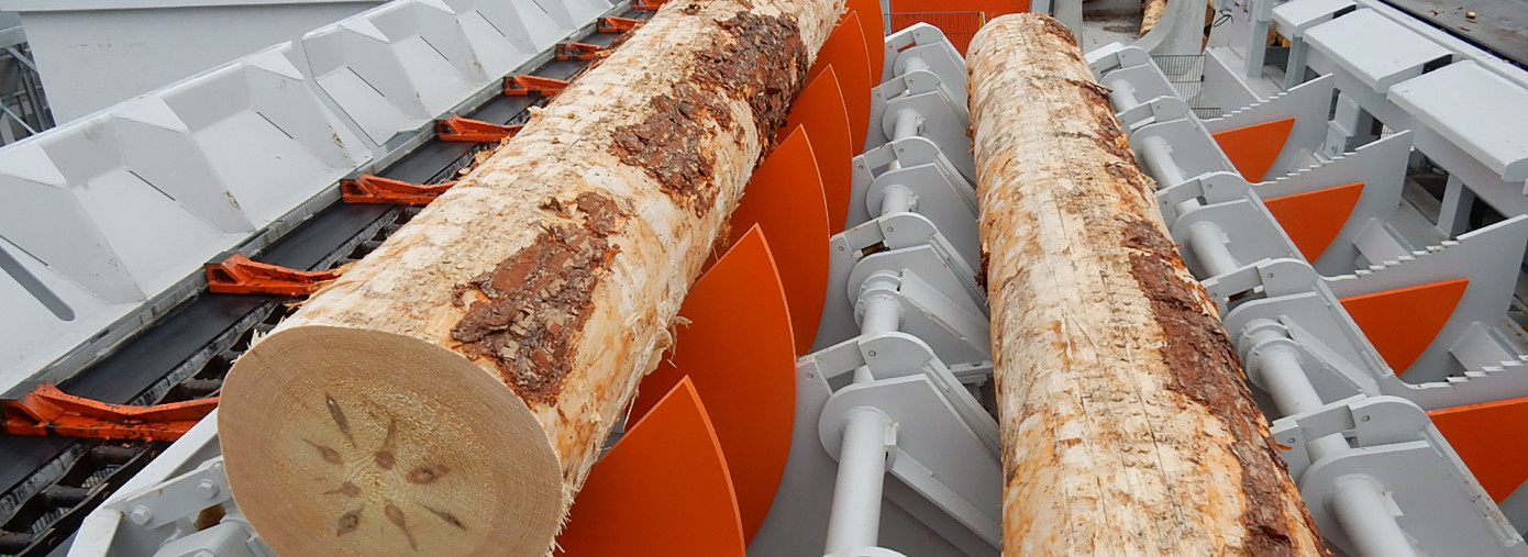 Hasslacher Group put into operation new log sorting line in Preding, Austria
