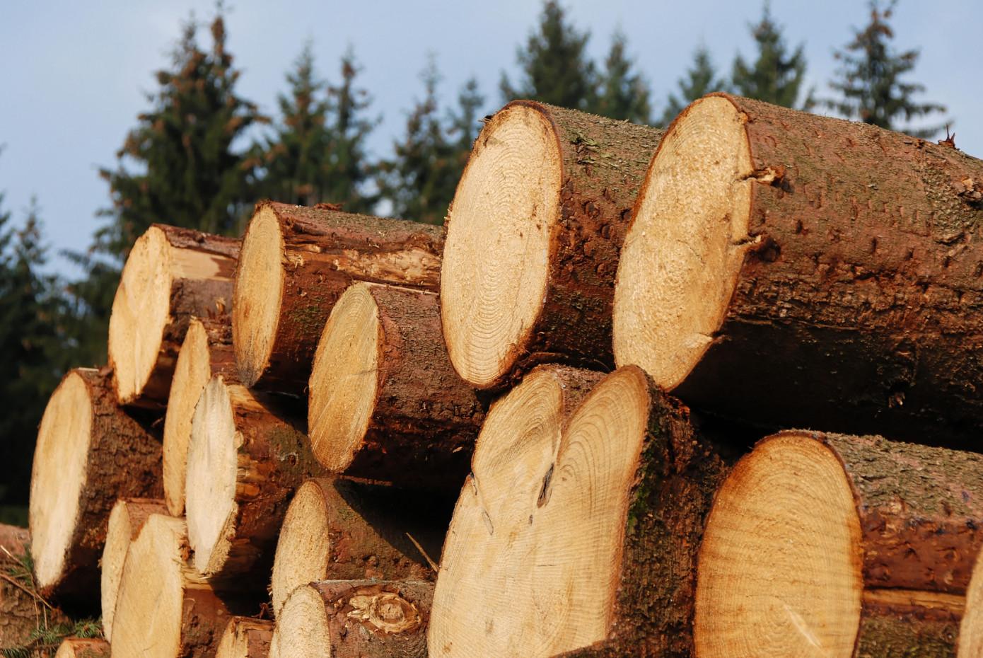В январе 2021 г. Финляндия увеличила импорт лесоматериалов на 7%