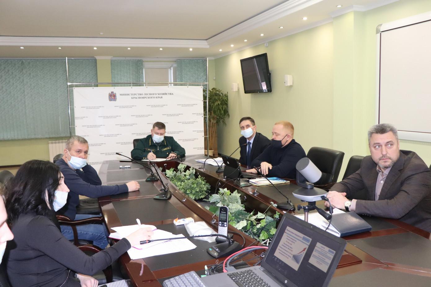 В Красноярском крае планируют построить завод по переработке неликвидной древесины
