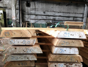 50 mm x 300 mm x 4000 mm Siberian Larch Flitch
