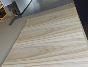 Particle board 19 mm x 1200 mm x 2500 mm