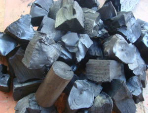 Oak Wood charcoal 5 in.