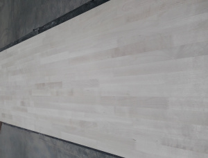 Birch Furniture panel 20 mm x 600 mm x 3000 mm