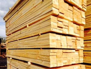 Birch Pallet timber 90 mm x 100 mm x 2400 mm