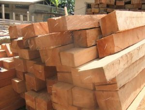 The Largest Timber and Lumber Marketplace: buy and sell wood