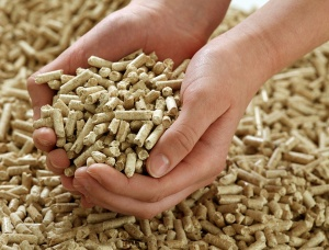 Oak Wood Pellets 8 mm x 20 mm