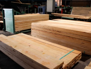 100 mm x 300 mm x 6000 mm KD Heat Treated Oak Lumber