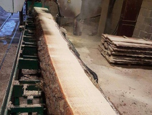 SPF Sawn Timber KD 50 mm x 60 mm x 6000 mm