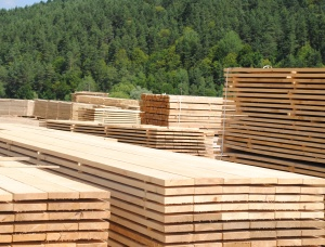 Sawn Timber Pine AD 50 mm x 200 mm x 5 m