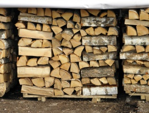 Birch Firewood cleaved 400 mm x 12 mm