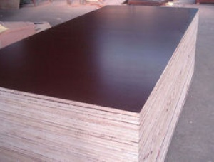 Film Faced Plywood 25 mm x 1220 mm x 2500 mm