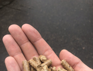 Holzpellets  Eiche 8 mm x 21 mm