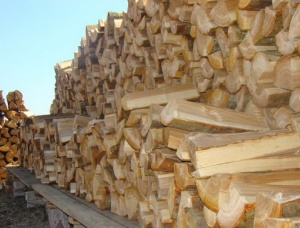 Birch Firewood cleaved 400 mm x 100 mm