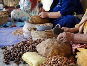 Argan Nuts Shells hard biofuel