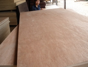 Poplar Plywood 12 mm x 80 mm x 1220 mm