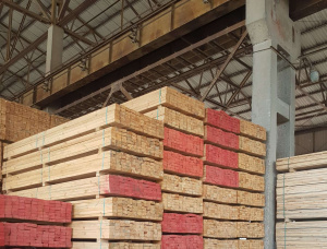 45 mm x 95 mm x 3985 mm KD R/S Heat Treated Swiss pine Lumber