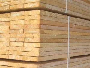 Siberian Larch Board KD 32 mm x 150 mm x 4800 mm