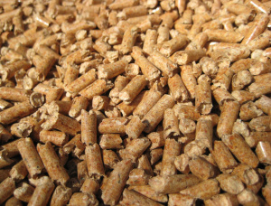 Beech Wood pellets 8 mm x 10 mm