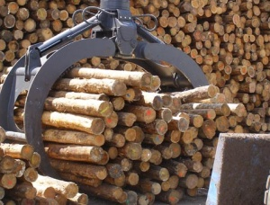 Hydraulic grapples for wood