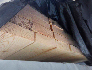 50 mm x 100 mm x 6000 mm KD S2S CCA Treated Scots Pine Lumber