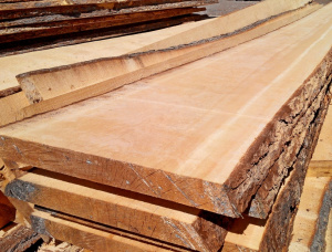 25 mm x 150 mm x 6000 mm Siberian Larch Flitch