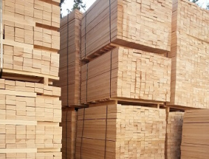 Beech Pallet timber 50 mm x 50 mm x 1000 mm