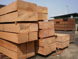 Doussie (Afzelia, Lingue, Apa, Chanfuta) Square Logs 150 mm x 8 m
