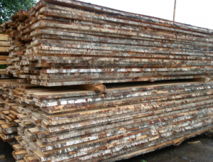 50 mm x 150 mm x 6000 mm Birch Flitch