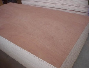 Poplar Plywood 5 mm x 50 mm x 1220 mm