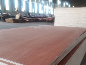 Sanded Eucalyptus Interior Plywood 2440 mm x 1220 mm x 6 mm