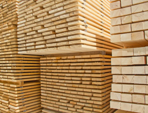 50 mm x 150 mm x 6100 mm GR R/S  Birch Lumber