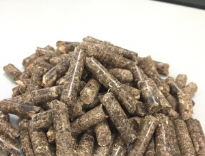 Eucalyptus Wood pellets 6 mm x 30 mm