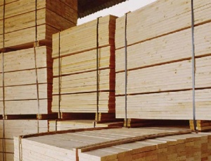 Spruce Wood Pallet Elements 2400 mm