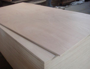 NS White Ash Film faced plywood 2440 mm x 2135 mm x 25 mm