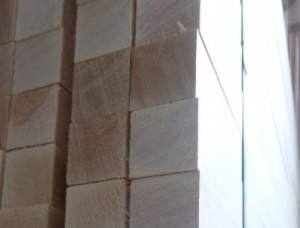 Birch Beam KD 25 mm x 25 mm x 200 mm