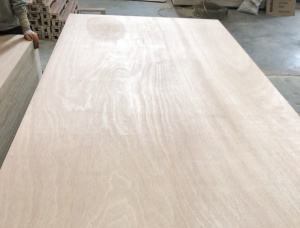 Sanded Eucalyptus Exterior Plywood 2440 mm x 1220 mm x 8 mm