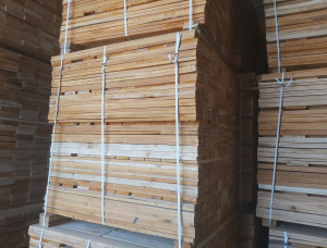 Aspen (Populus tremula) Pallet timber 18 mm x 90 mm x 11 m