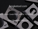 Tungsten carbide reversible blades
